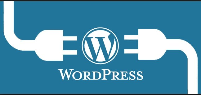 Do You Need To Stuff Your Website With Hundreds of WordPress Plugins?